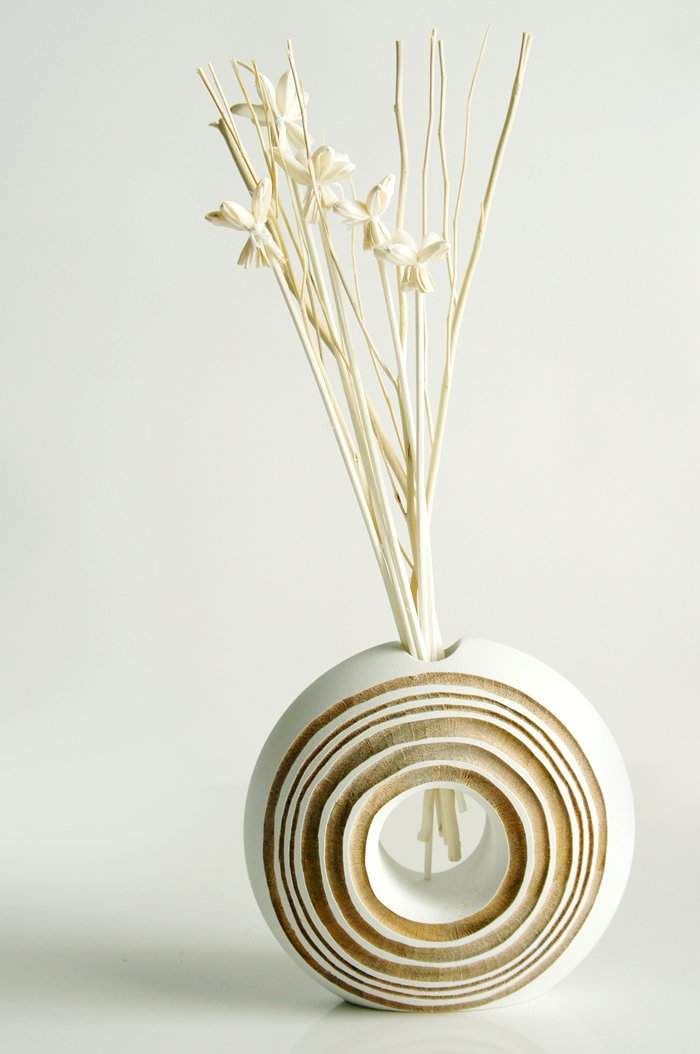 Exotic Set of Mini Night Jasmine Sola Wood Stem and Branch Reed Diffuser Arrangement for Home Fragrance Aroma Oil. by Exotic Aroma (Image #1)