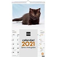 Finocam - Calendario de pared 2021 Escribir Imágenes Espiral 25x40 Gatitos Catalán