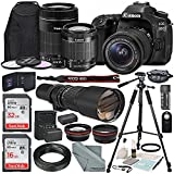 Canon EOS 80D DSLR Camera with EF-S 18-55mm f/3.5-5.6 IS STM Lens & EF-S 55-250mm f/4-5.6 IS STM Lens and 500mm f/8 Manual Focus Telephoto Lens + T-Mount Adapter along with Deluxe Bundle For Sale