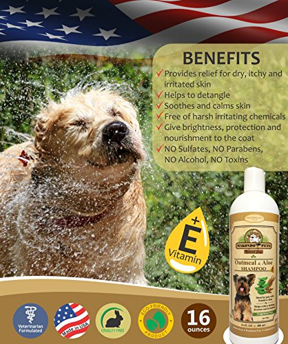 Oatmeal Dog Shampoo With Aloe Vera And Vitamin E Hypoallergenic Dog Shampoo For Pets With Dry Sensitive Or Itchy Skin All Natural Fragrance Free 16 Ounces Of The Best Dog Shampoo For Dry Skin