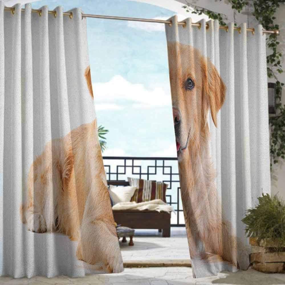 Andrea Sam - Cortina de privacidad para exteriores para pérgola Golden Retriever, silueta negra de perro Purebred con inscripción en estilo escrito a mano, color dorado, negro, blanco, aislante térmico, para balcón: