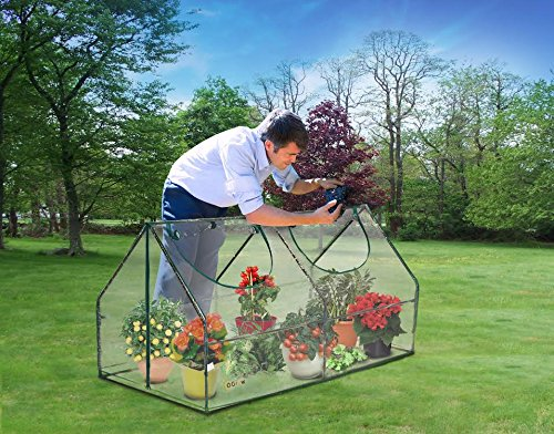61v N3JjTsL - Ogrow Ultra Deluxe Compact Outdoor Seed Starter Greenhouse Cloche