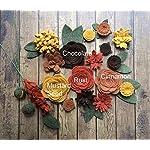 Wool-Felt-Fabric-Flowers-Autumn-Flower-Embellishment-Large-Posies-20-Flowers-18-leaves-Create-your-own-Headbands-Wreaths