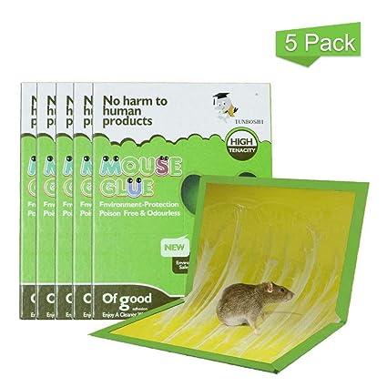 Amazon.com: ICFPWR - Trampa para ratón, pegamento para ratón ...