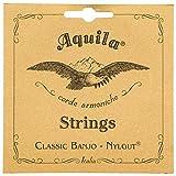 Aquila AQ-6B New Nylgut Banjo Strings Medium Tension DBGDG Set of 5