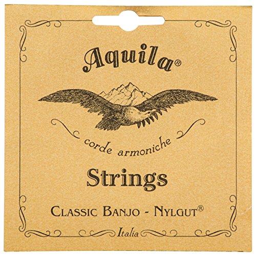 Best Synthetic Gut String (Aquila New Nylgut AQ-6B Banjo Strings – Medium Tension DBGDG - 1 Set of 5)