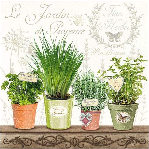 33x33cm Le Jardin De Provence Id/éal Comme Cadeau Party env Ambiente Serviettes en papier Dinner