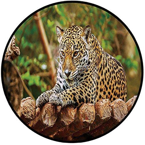 Printing Round Rug,Zoo,Jaguar on Wood Floor Wildlife Animals Feline Big Cat Mammal Predator Resting Mat Non-Slip Soft Entrance Mat Door Floor Rug Area Rug For Chair Living Room,Green Yellow Brown by iPrint (Image #1)