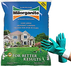 Milorganite 0636 Organic Nitrogen Fertilizer, Safer and Slow Release, for Lawn and Grass, Granular Nitrogen Fertilizer 32 lbs (Bundled with Pearsons Protective Gloves)