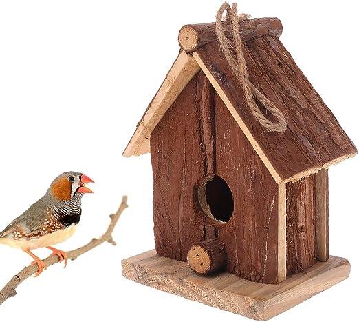 Green & Rare - 1 casa de pájaros de Madera para pájaros: Amazon.es: Productos para mascotas