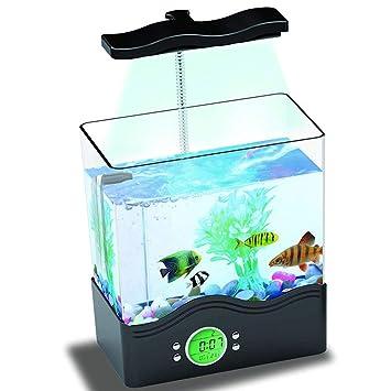 Mini Acuario Ornamental Tanque De Peces Ecológico Multifuncional USB Lámpara De Escritorio Tanque De Peces Caja De Tortuga,Black: Amazon.es: Hogar