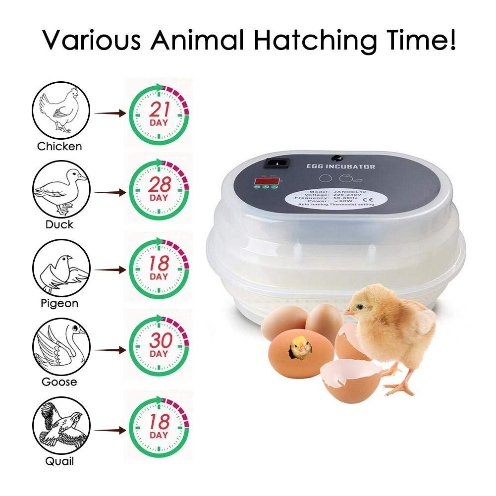 Luerme 220V Home Use Hatcher Egg Incubator Digital Display Fully Automatic Hatcher Intelligent Temperature Control