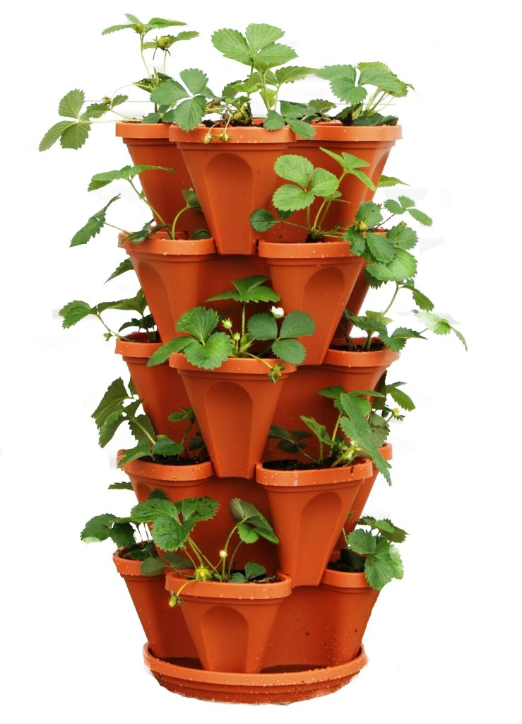 5 Tier Stackable Strawberry, Herb, Flower, and Vegetable Planter - Vertical Garden Indoor/Outdoor by Mr. Stacky