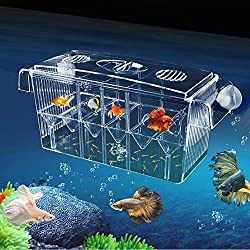 MKDcom 4 Rooms HD Fish breeding Box Aquarium breeding Box Double Hatching Incubator Isolation Box