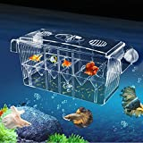 MKDcom 4 Rooms HD Fish breeding Box Aquarium breeding Box Double Hatching Incubator Isolation Box