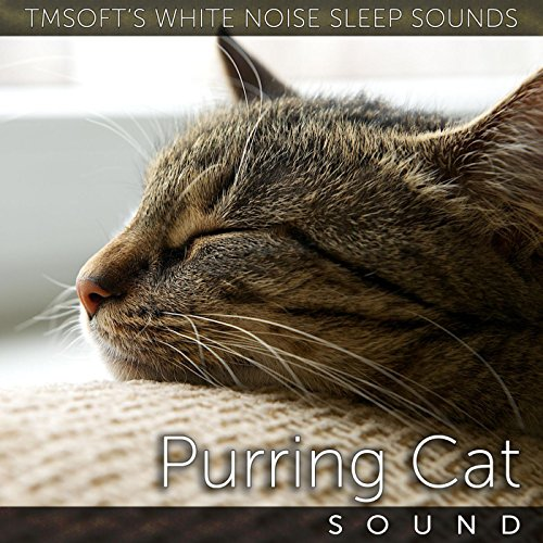sleeping cats video