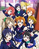 Best Idol For Home Decors - Love Live Poster Anime School Wall Art Idol Review