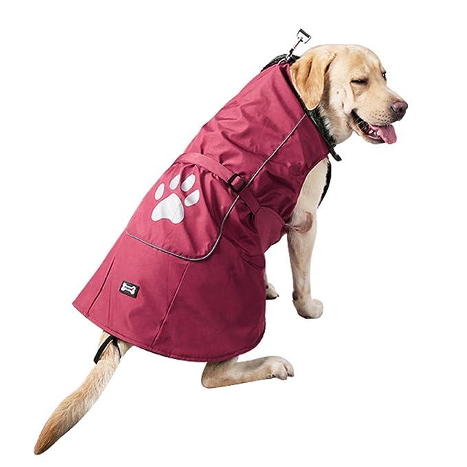 Amazon.com : eDealMax reflectantes impermeables ropa de Abrigo Chaqueta del Chaleco del perro Suave capa del perro Caliente forro Polar Profesional del ...