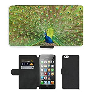 Super Stella Cell Phone Card Slot PU Leather Wallet Case // M00148041 Peacock Bird Feather Kurpark // Apple iPhone 5 5S 5G