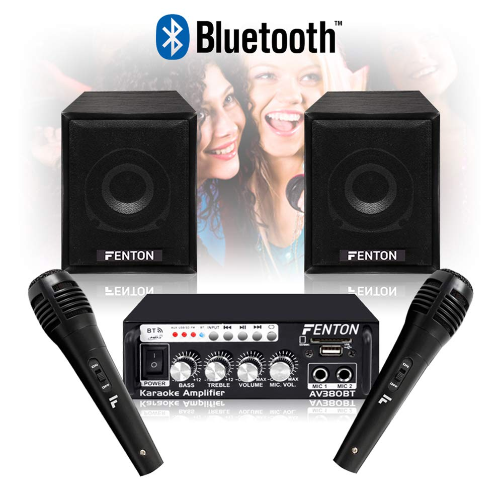 Fenton Karaoke bedroom speakers/Amplifier