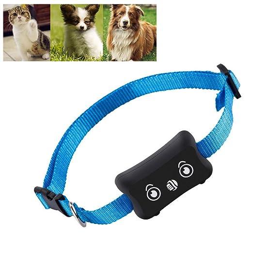 AINGOL Rastreador GPS para Mascotas, Rastreador GPS para ...