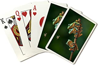 product image for Tree Frogs watching Dragonfly (Playing Card Deck - 52 Card Poker Size with Jokers)