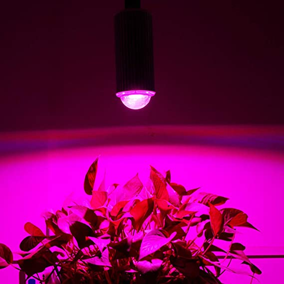 Indoor Lighting Plant Lights HLL 180W LED Grow Light Bulb For Indoor E27 60Leds Plants Bulb Garden Greenhouse Vegetable Hydroponic Plants Full Spectrum 2Pack