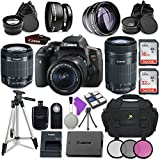 Canon EOS Rebel T6i Digital SLR Camera Canon EF-S 18-55mm is STM Lens + Canon EF-S 55-250mm f/4-5.6 is STM Lens