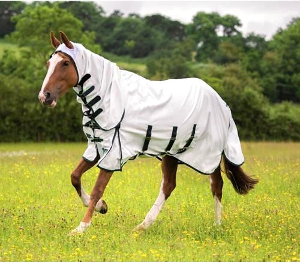 Shires Sweet Itch Combo Fly Rug