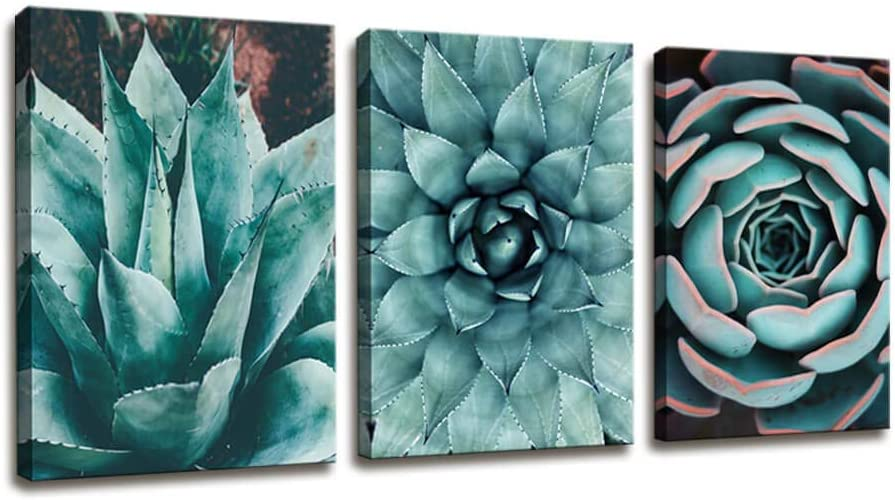 Canvas Wall Art Contemporary Simple Life Blue Agave Succulents Painting Wall Art for Bathroom Wall Decor - 3 Panels Framed Canvas Prints Tropical Plants Giclee Picture for Home Office Decorations