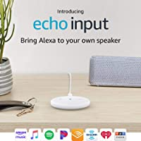 Deals on Amazon Echo Input