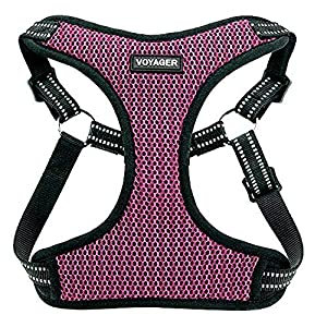 Voyager Step-In Flex Dog Harness – All Weather Mesh, Step In Adjustable Harness for Small and Medium Dogs by Best Pet…