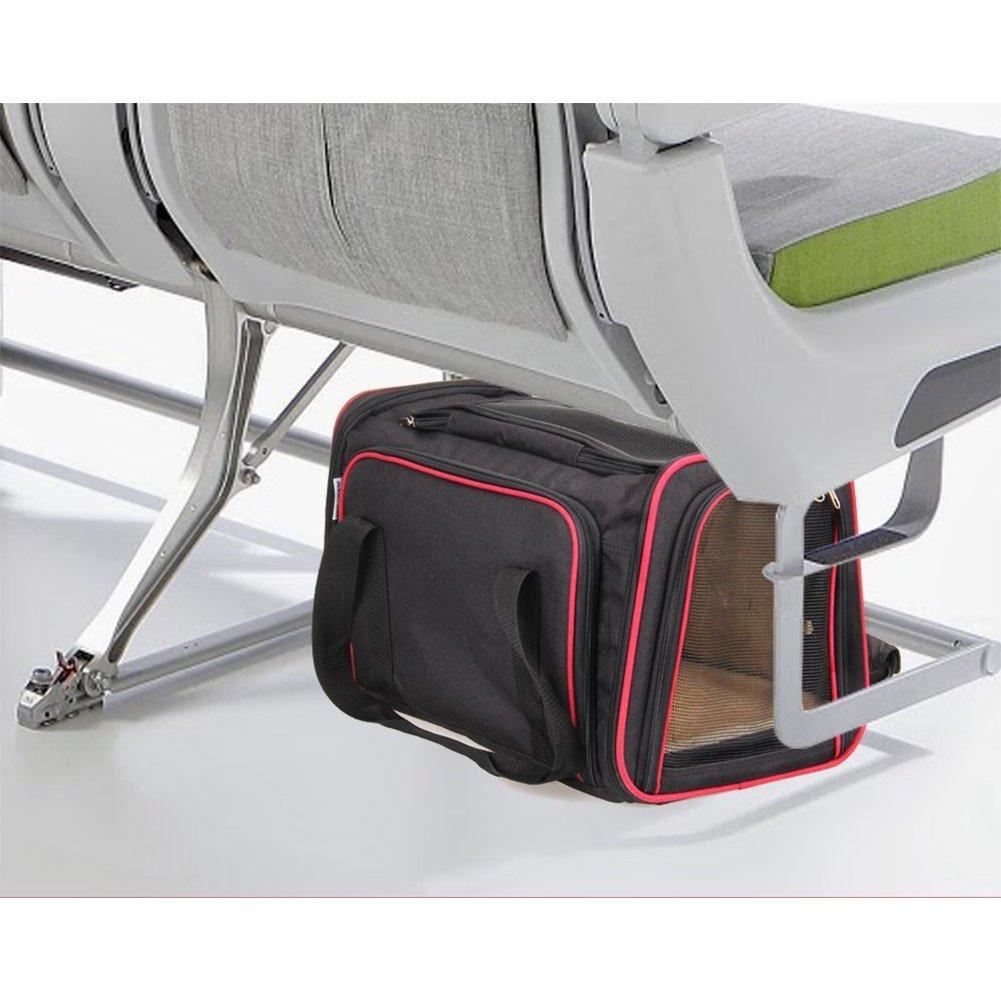 Amazon.com: Amyove Bolsa transpirable para llevar el gato al ...