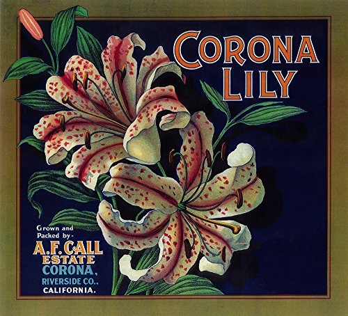 Corona Lily Orange - Vintage Crate Label (16x24 SIGNED Print Master Giclee Print w/Certificate of Authenticity - Wall Decor Travel Poster)