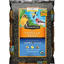 Pennington Seed Thistle Bird Feeder, 10-Pound