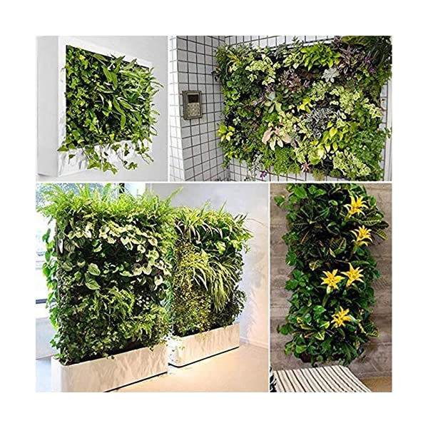 Starry sky Black Wall Colore pensili Piantare Borse 36/72 Tasche coltiva Il Sacchetto Planter Verticale orto Living… 6 spesavip