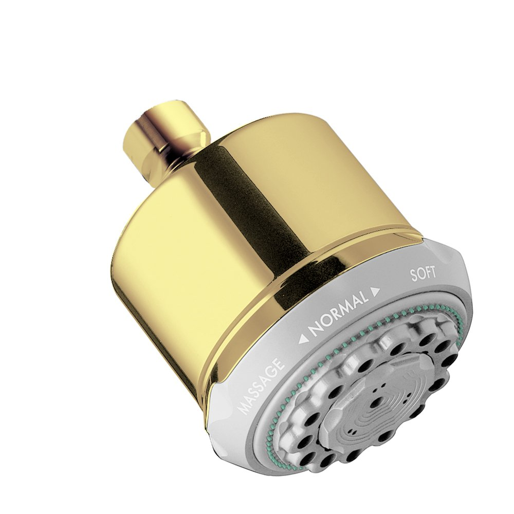 Hansgrohe 28496931 Clubmaster Shower Head, Polished Brass   Fixed  Showerheads   Amazon.com