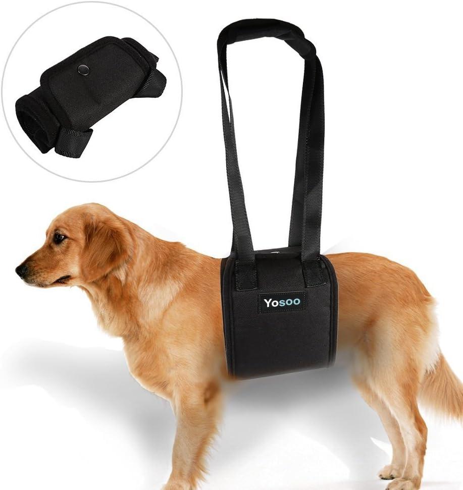 ayuda a perro con debilidad en las patas frontales o traseras, para ayudarlos a pararse, paseo, entrar en coches, subir escaleras, mascotas heridas, ancianas.