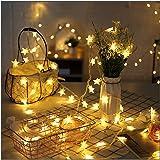 イルミネーションライト 星型装飾LEDストリングライト 防水 6m 40球 電池式 室外 装飾 結婚式 お庭など対応 パーティー 飾り ライト 正月 クリスマス 飾り バレンタインデー 電飾 (電球色)
