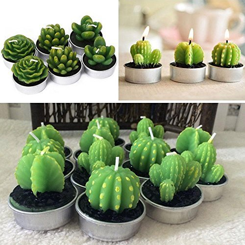 Window Delicate Decorative (Aolvo Succulent Candles Bulk, Set of 6 Smokeless Handmade Delicate Succulent Cactus Tealight Candles for Wedding Birthday Party Home Decoration By)