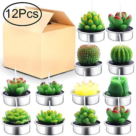 Amazon.com: Outee Cactus velas de vela, 12 unidades, hechas ...