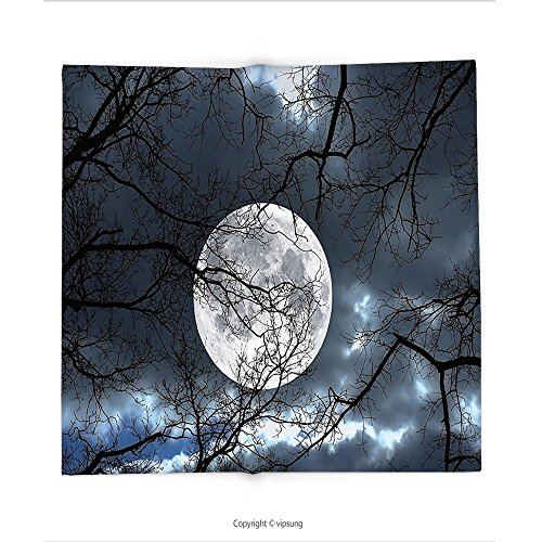 Custom printed Throw Blanket with Decor Full Moon at Night in the Forest Winter Time Mystical Dramatic Days Luna Photo Inch Slate Blue Black Super soft and Cozy Fleece (Halloween At Luna Park)