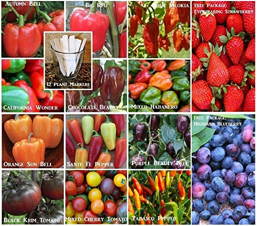 Bulk 14 Hot Pepper Seeds Bell Pepper Seeds Survival Seeds 863 Seeds Upc 650327336964 + 12 Plant Markers Bhut - Chocolate Bell Pepper