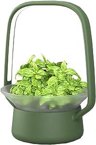 VegeBox Stylist Smart LED Hydroponics Growing System, Indoor LED Lighting Herb Garden Plant Germination Kits (V-Basket, Green)