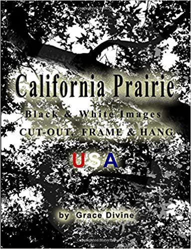 Ebooks en formato pdf descarga gratuitaCalifornia Prairie Black & White Images Cut-out, Frame & Hang USA 1514859696 (Spanish Edition) PDF ePub MOBI by Grace Divine
