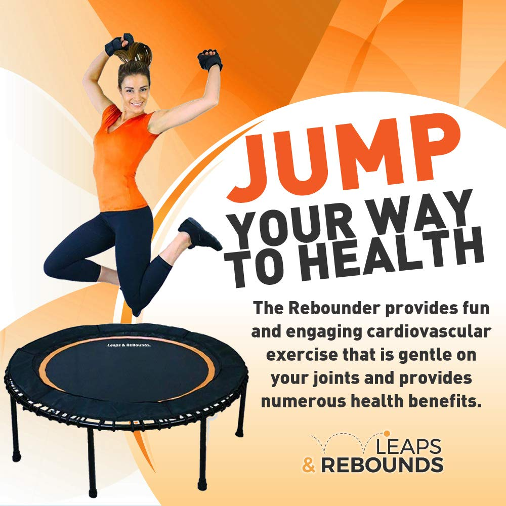 023a9ace15b4 Amazon.com : Leaps & ReBounds Bungee Rebounder - in-Home Mini Trampoline -  Safety Bungee Cover, Rubber Bungee Fitness Trampoline - Named Best Value ...
