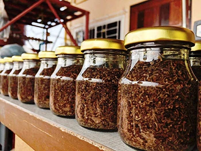 Siam Live Aquarium 75G Mosquito Larvae UHT Fish Food for Betta,Killifish and All Types of Fish
