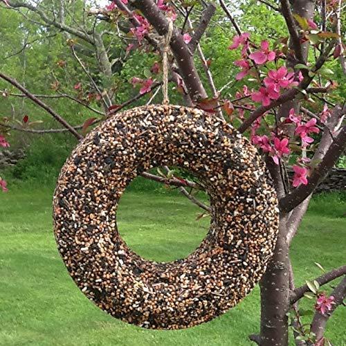 Handmade Bird Seed Wreath with Thistle Seed