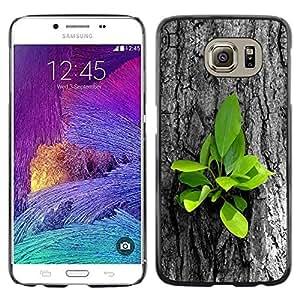 LECELL -- Funda protectora / Cubierta / Piel For Samsung Galaxy S6 SM-G920 -- Beautiful Nature Tree Fresh Leaves Grow --