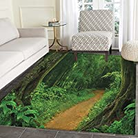 Tropical Rugs for Bedroom Tropical Jungle Forest Trees Pathway Foliage Wilderness Nature Landscape Picture Circle Rugs for Living Room 2x3 Green Brown